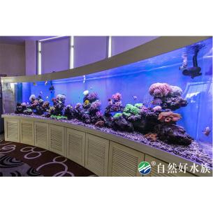 5m亚克力海水生缸