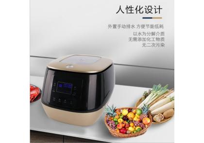 Intelligent fruit and vegetable disinfection machine (second generation)