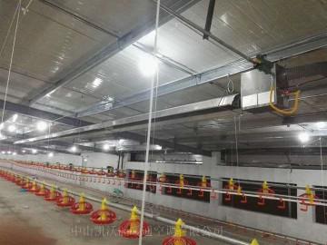 菲律賓肉雞舍使用低密度管式正壓輻射采暖設備(LTS系列)