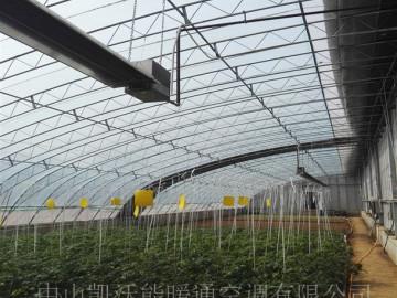 北京延庆温室大棚使用低密度管式辐射加热器