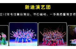 深圳市新迪文化传播有限公司