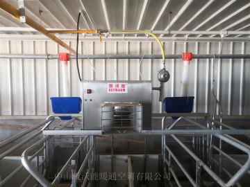 石羊集團馬莊6000頭母豬場安裝單正壓直燃式暖風機