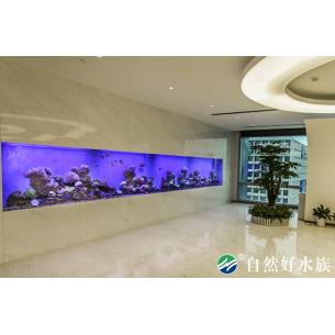 8m亚克力海水生态缸