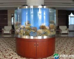 惠州市海洋石油大厦海水生态鱼缸