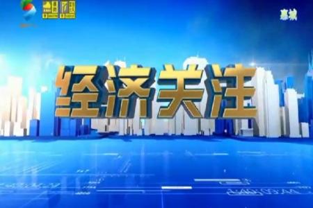 2019年8月惠州電視臺采訪專題報導