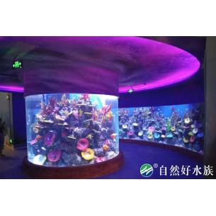 大型亚克力圆柱形鱼缸