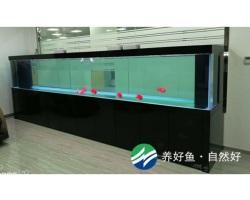 南山TCL产业园4m龙鱼缸