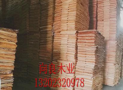全一级桉木原材料