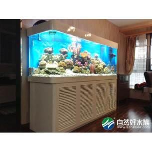 家庭餐厅鱼缸