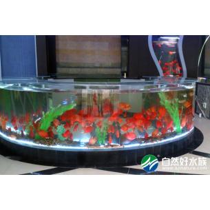 购物商场做鱼缸-圆弧形鱼缸