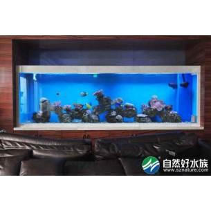传承投资办公室鱼缸-深圳