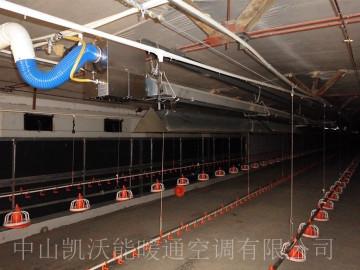 山東鳳祥劉廟雞場平養雞舍保溫使用低密度管式正壓輻射采暖設備(LTS系列)