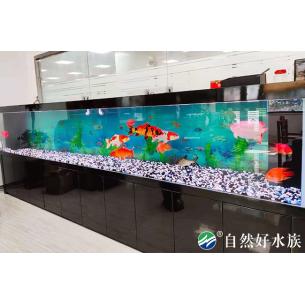 办公室玻璃鱼缸2
