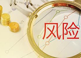 项目投资价值分析成功案例