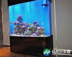 万隆地产办公大厅鱼缸