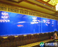 10米亚克力鱼缸案例