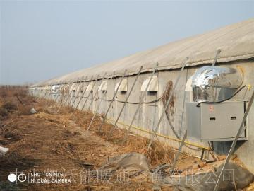 山東濰坊中糧平養雞舍安裝雙正壓室外直燃暖風機