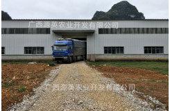 云南省某大型饲料厂使用我厂的复合肥造粒剂