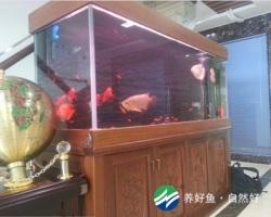 办公室实木雕花龙鱼缸
