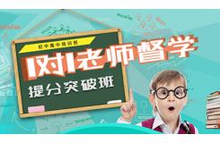 北京环球金语教育咨询有限公司