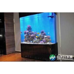 万隆地产亚克力鱼缸-办公大厅生态鱼缸