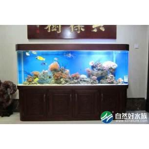 高档红木海水生态鱼缸-老总办公室养鱼缸